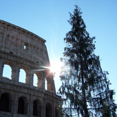 christmas at the colosseo