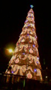 courtesy of my LG cameraphone, the very fuzzy Christmas tree on the waterfront in Lisbon.